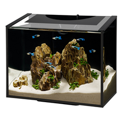 Aqueon Ascent Frameless Aquarium Kit - 6 gal