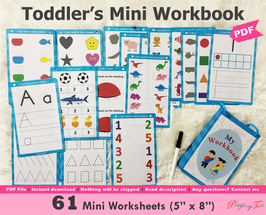 Mini Workbook