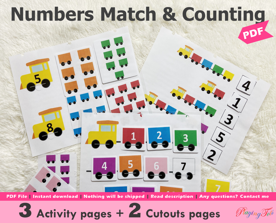 Numbers Match and Counting Activity