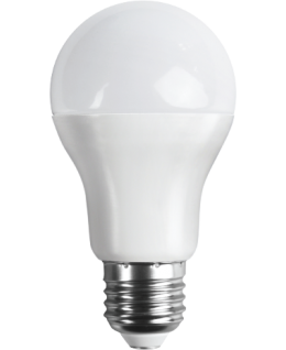 Ampoule LED E27 A60 10.5W 1055Lm Dimmable