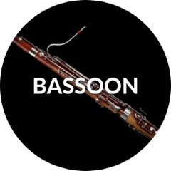 Musical Expressions: Bassoon Instruction
