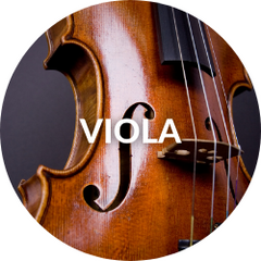 Musical Expressions: Viola Instruction