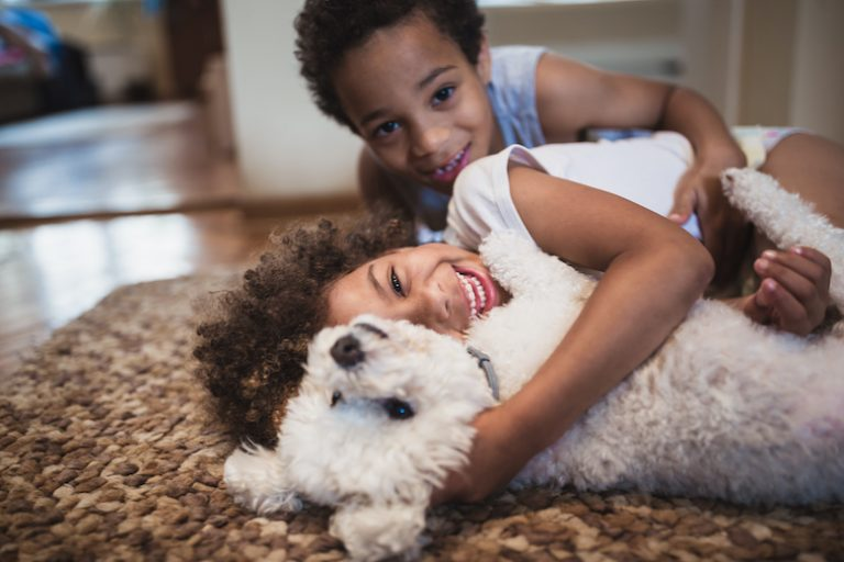 Ways Young Children Can Help Care for Your Dog