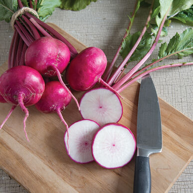 Sweet Turnip | Red