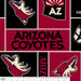 Arizona Coyotes - NHL Fleece Print - Patchwork