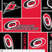 Carolina Hurricanes - NHL Fleece Print - Patchwork