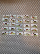 British American Tobacco Famous Racehorse Cards