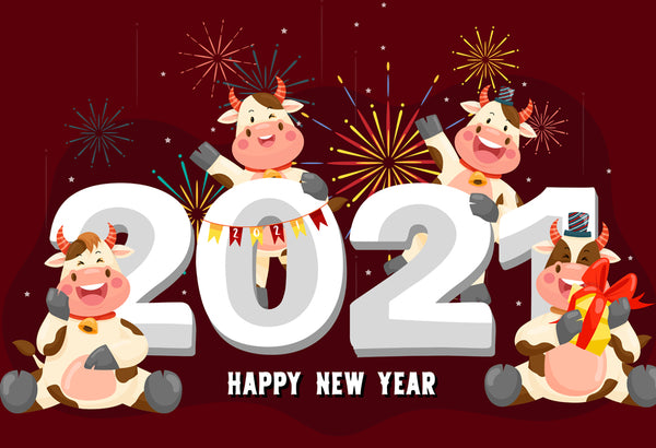 RayCue Lunar New Year 2021 Holiday Notice