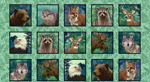 Studio e - Woodland Wonders - Animal Blocks
