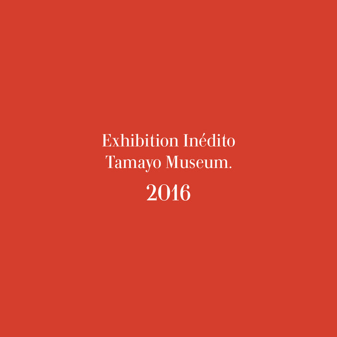 Exhibition Inédito at Tamayo Museum