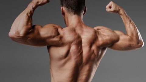 The Most Effective Way Of Increasing Muscle Mass