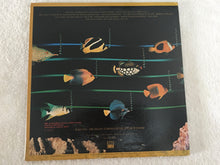 Load image into Gallery viewer, Stevie Wonder ‎– Stevie Wonder's Original Musiquarium 1,  2x Vinyl LP, Tamla ‎– 6002TL2, 1982, USA