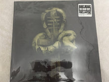 Load image into Gallery viewer, Nile ‎– In Their Darkened Shrines, 2x Vinyl LP, Relapse Records ‎– RR 6542-1, 2002, USA