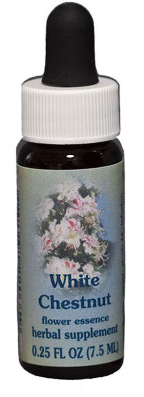 White Chestnut Flower Essence The Herb Shoppe
