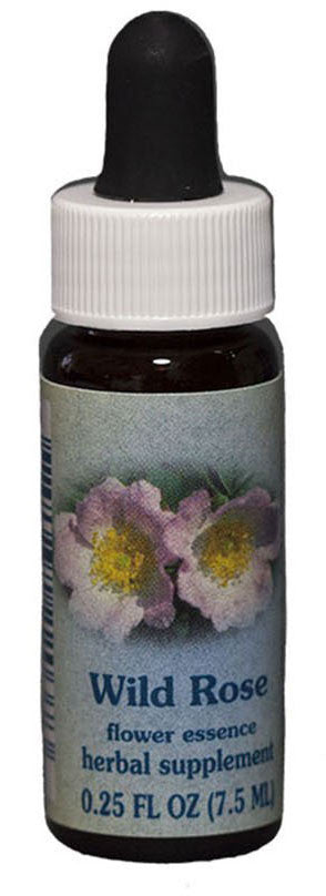 Wild Rose Flower Essence