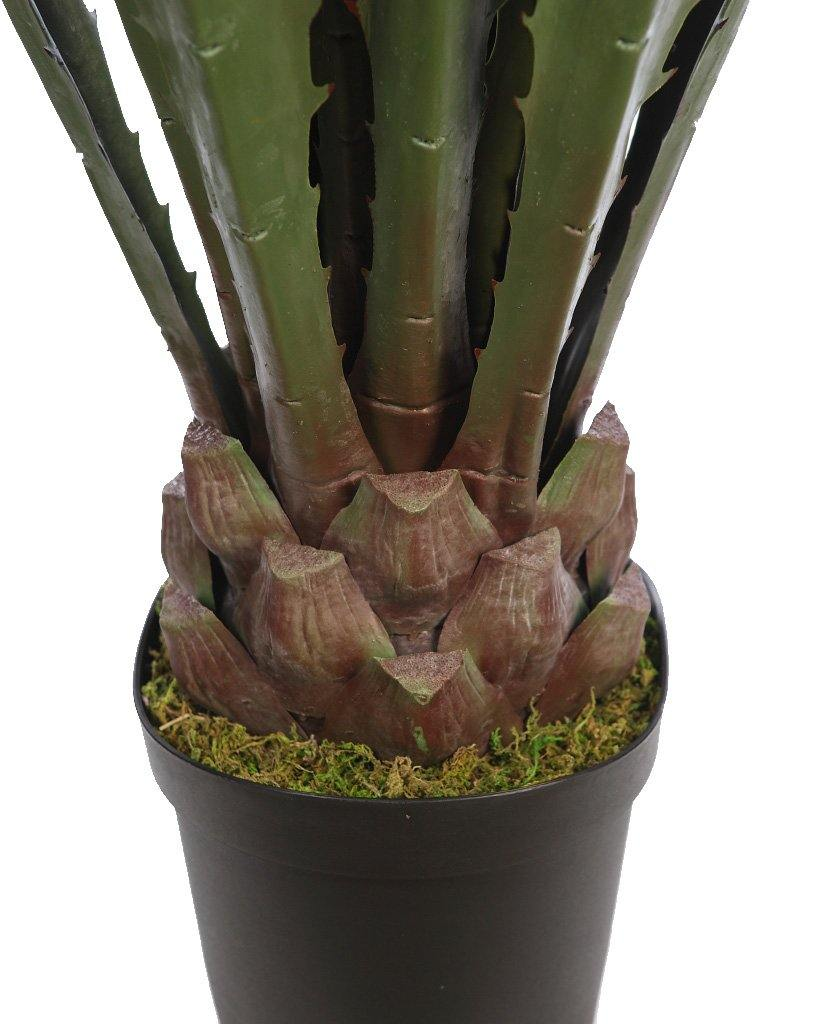 CACTUS AGAVE CON MACETA 125CM - CARMAN Showroom
