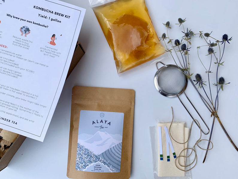 Introducing: The Alaya Kombucha Kit