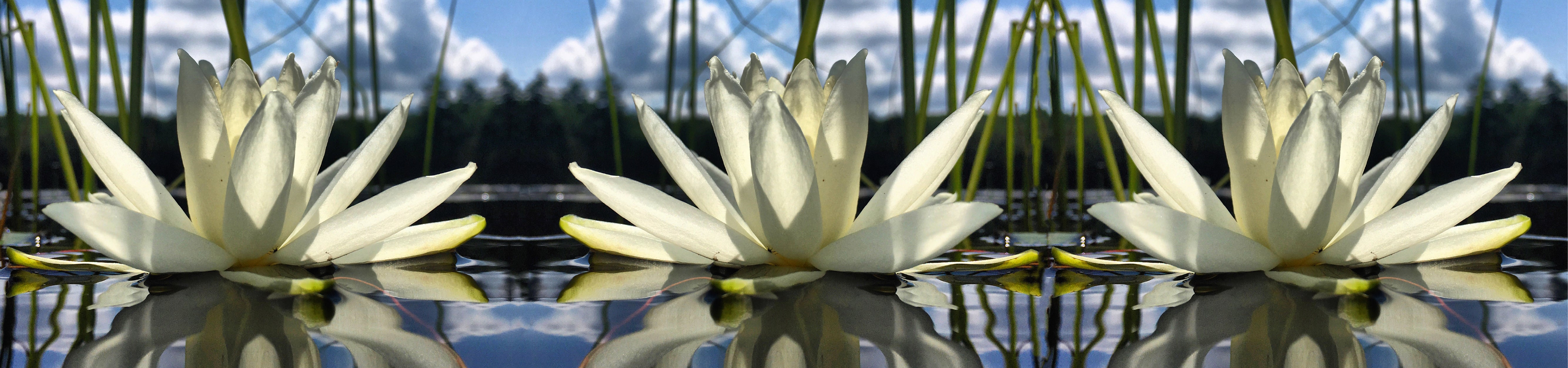Being Beauty Meditation