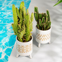 Load image into Gallery viewer, Ibiza Modern Leggy Planter