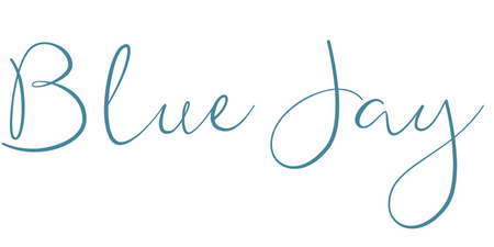Blue Jay Baby Boutique