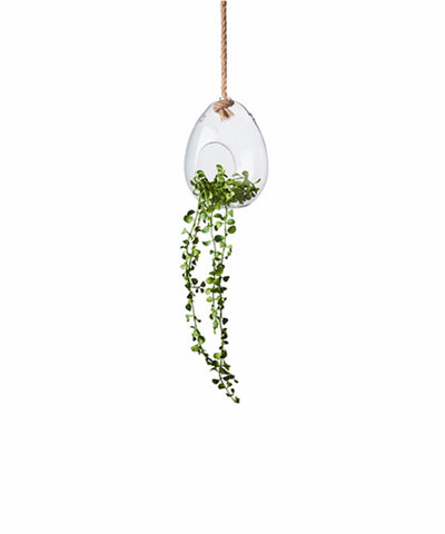 Hanging Bubble Pot