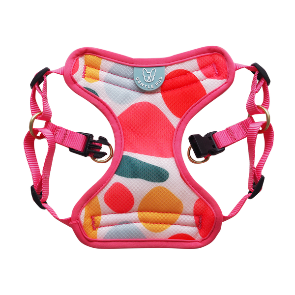 Gentle Pup Easy Harness - Candy Callie