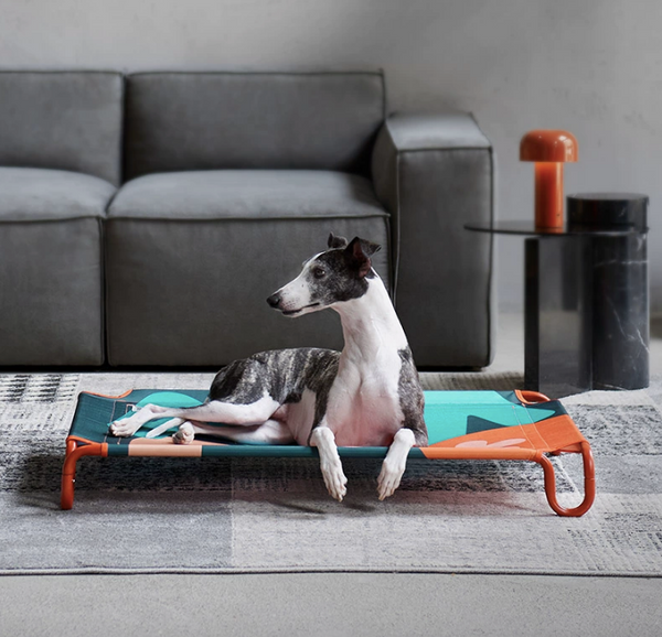 Kitty Yoyo Elevated Dog Bed - Moens