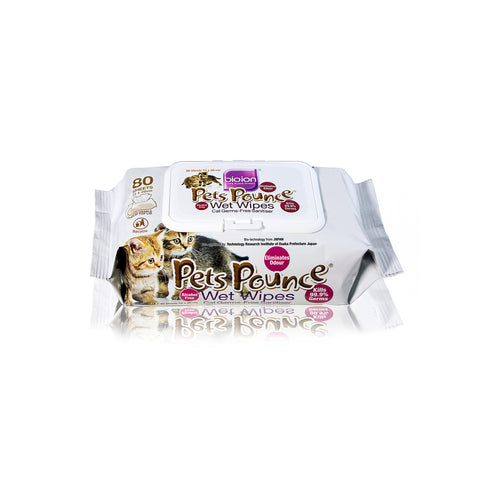 Bioion Pets Pounce Wet Wipes