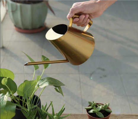 Spring is coming, these 4 watering cans may help moisturize your plants