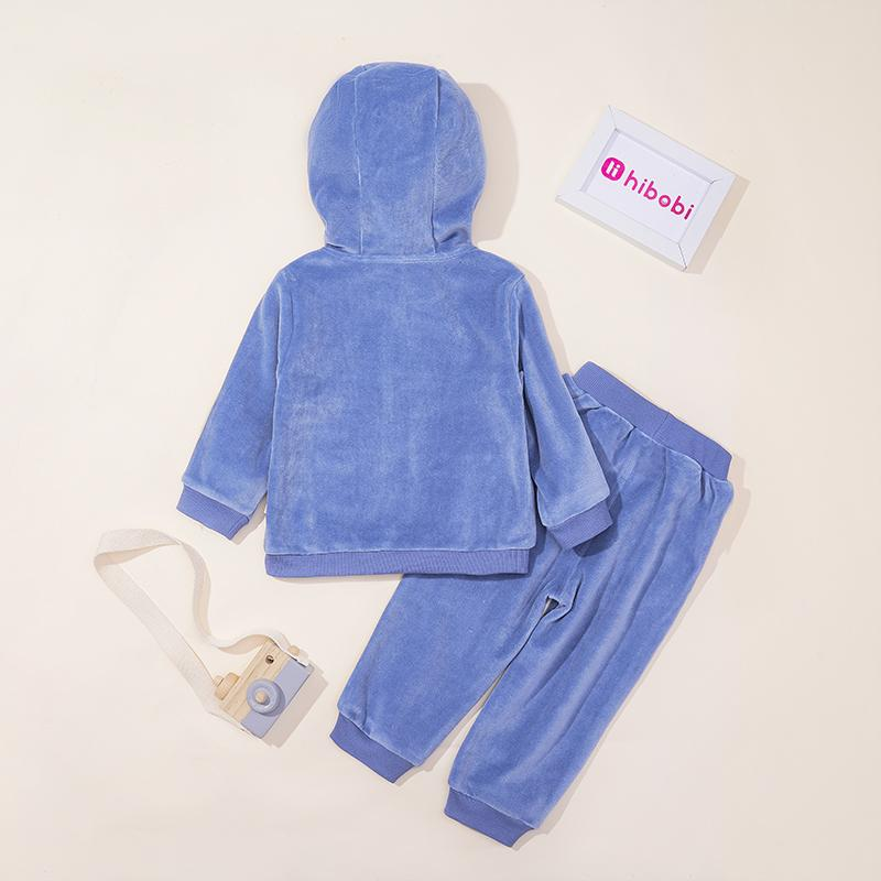 2-piece Velvet Hoodie & Pants for Toddler Boy Wholesale children's clothing