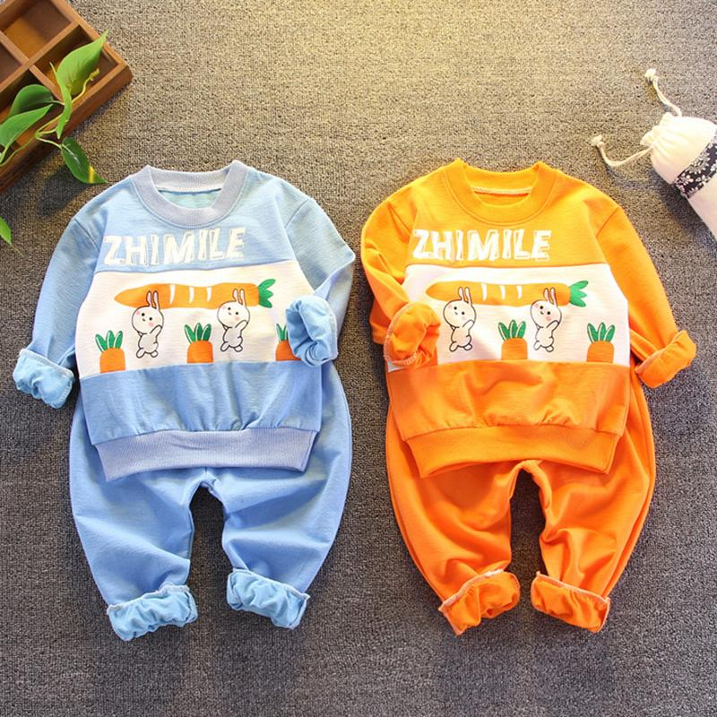 2-piece Rabbit Pattern Sweatshirt & Pants for Toddler Girl Wholesale children's clothing
