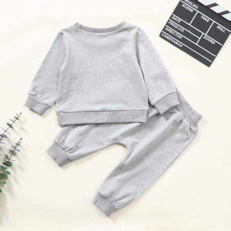 2-piece Bear Pattern Sweatshirts & Pants for Baby Boy Wholesale children's clothing
