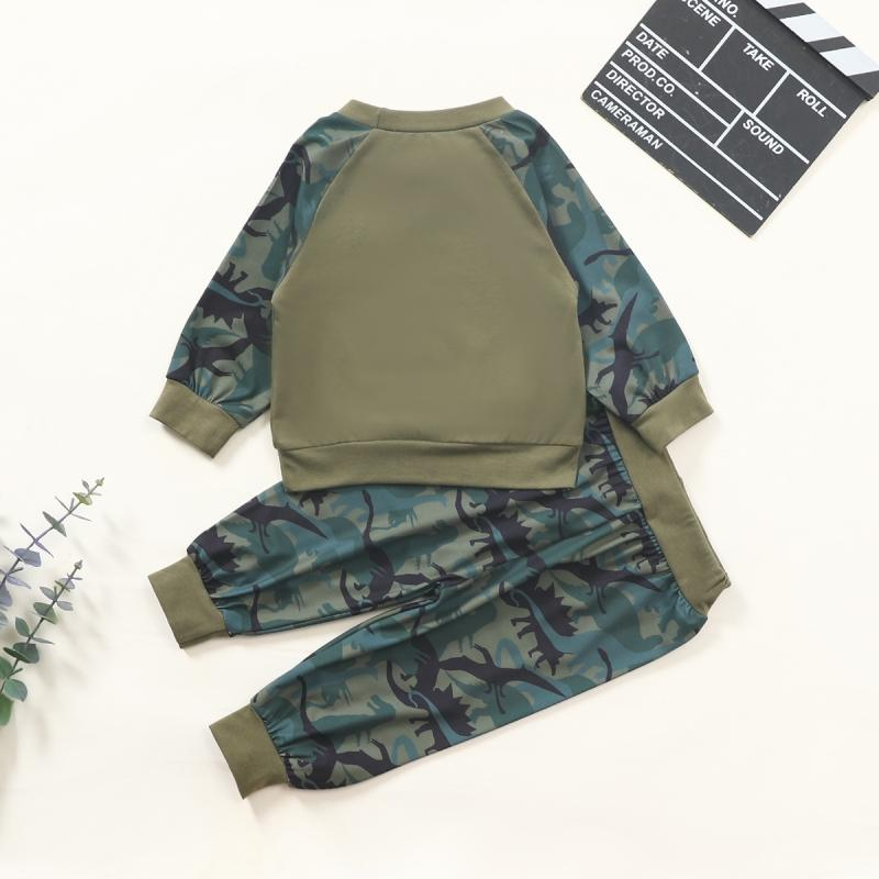 2-piece Dinosaur Pattern Sweatshirts & Pants for Baby Boy Wholesale children's clothing