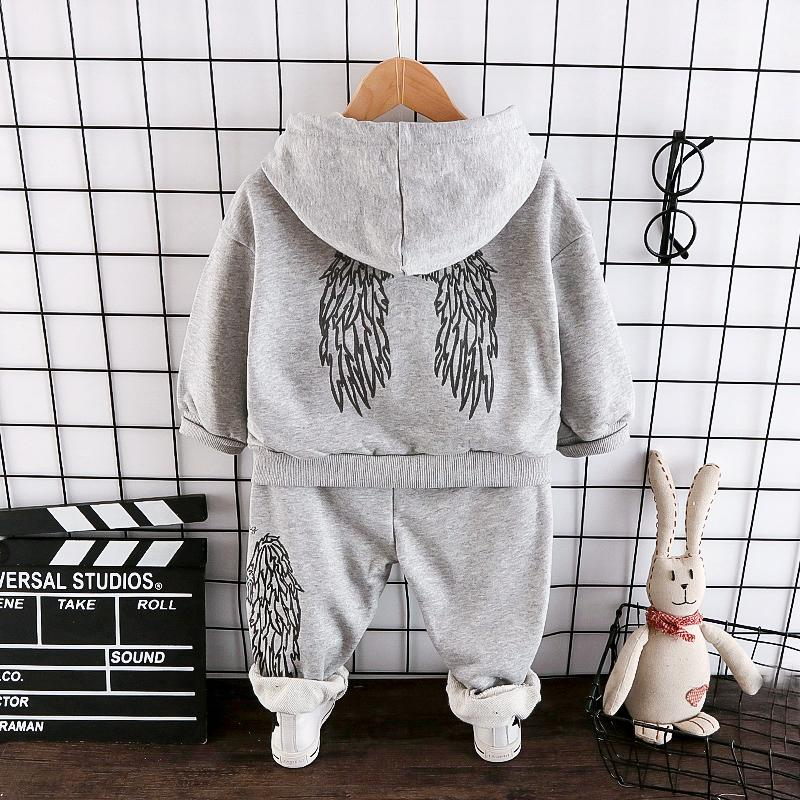 2-piece Wings Pattern Hoodie & Pants  for Toddler Boy Wholesale children's clothing