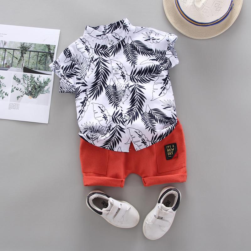 2-piece Feather Pattern T-shirt & Shorts for Toddler Boy Wholesale children's clothing