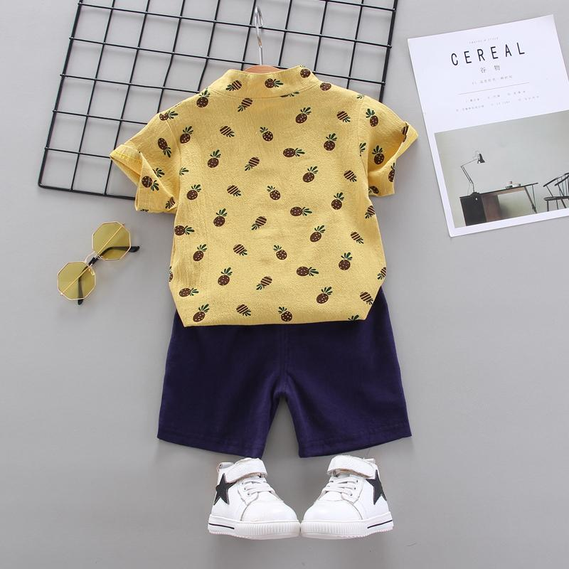 2-Piece Toddler Boy Pineapple Pattern Short-Sleeve Shirt & Shorts Wholesale Children's Clothing - PrettyKid
