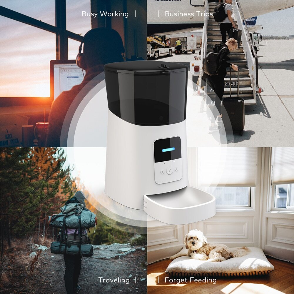 Smart Dog and Cat Feeder