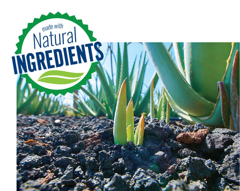 aloe vera plant and made with natural ingredients badge