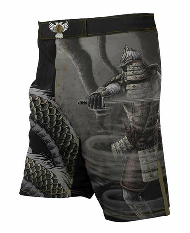 Raven Fightwear Fight Shorts Elements Wind Men's