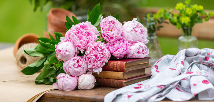 Peonies from Love Delivered