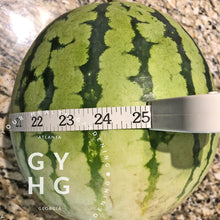 Load image into Gallery viewer, Merrimack Sweetheart Watermelon Heirloom Seeds (Very Rare)