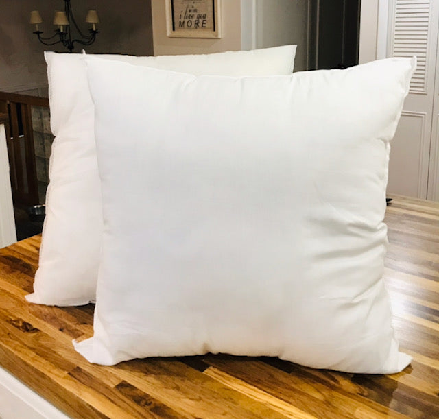 Pillow Insert 2 pack