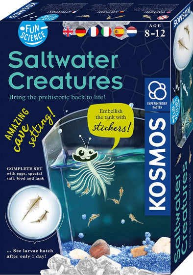 a photo of the product: Kosmos experimenteerset Saltwater Creatures junior