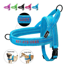 Load image into Gallery viewer, Personalized Gentle Dog Cat Harness | Personalized Dog Cat Collar |Customized Dog Cat Leash