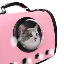 Load image into Gallery viewer, side view of astronaut capsule design pet carrier pink