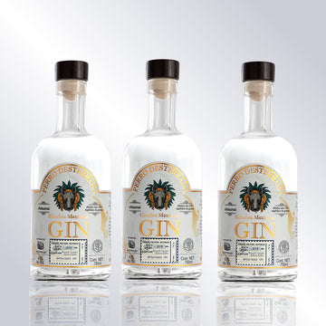3 Bottles of Mexican Gin Desterrado Dog 750 ml 43% AV