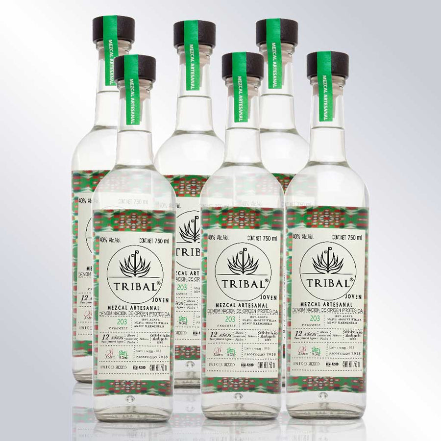 Box of 6 Bottles Mezcal Cuishe and Espadin 203 750 Ml