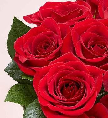 Two Dozen Red Roses with Red Vase - Munchiezz LLC