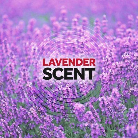 Raid Ant & Roach Killer 26, Lavender Scent, 20 Oz Value Size - Munchiezz LLC