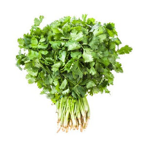 Cilantro - bundle